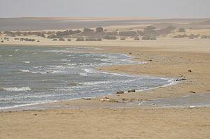 Wadi_el-Raiyan_by_Hatem_Moushir_3